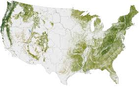 Us Map Image Where The Trees Are Image Of The Day