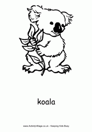 koala colouring pages