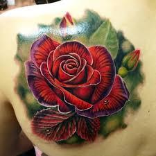lizvenom blackberry and splendid fairy wren tattoo by liz venom