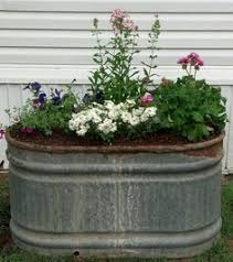 Galvanized Trough Planter by Garden Shed I Love The Flowers In The Trough I Have A Trough Like