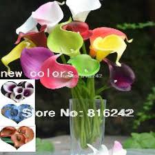 30 colors natural real touch flowers picasso purple white calla