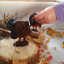 fall and thanksgiving sensory bin and table fillers turkey