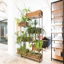 Plant Room Divider Green Divider Greenery Nyc