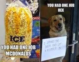 Meme Ny - you had one job meme photos you had one job meme ny daily