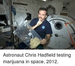 Astronaut Meme - astronaut chris hadfield testing marijuana in space 2012 chris