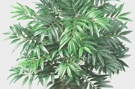 imitation plants home decoration plant beauiful silk and artificial plants for office amp home