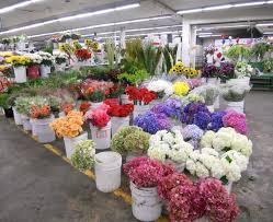flower delivery sf sf flower market socketsite san francisco flower mart going