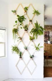 planter wall inspirations we love nonagon style
