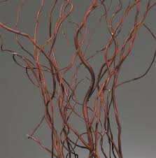 curly willow branches curly willow weddings events centerpieces