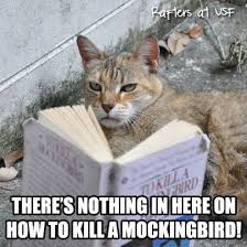 To Kill A Mockingbird Meme - to kill a mockingbird funny memes kill best of the funny meme
