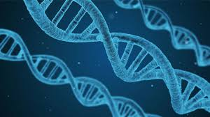 9 burning questions crispr genome editing answered cancer