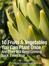 10 Vegetables U0026 Herbs You by The 35 Easiest Container U0026 Pot Friendly Fruits Vegetables U0026 Herbs