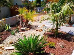Landscape Ideas For Backyard by Unique Desert Landscaping Ideas