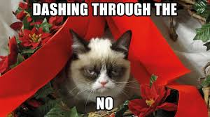Merry Christmas Cat Meme - funny grumpy cat christmas funny cat pictures