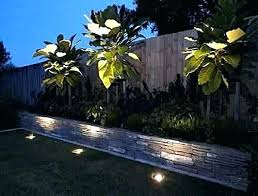 Landscape Up Lights Outdoor Up Lighting Guide