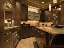 Modern Wood Kitchen Cabinets Modern Kitchen Burl Maple All Wood Kitchen Cabinets Magnificent