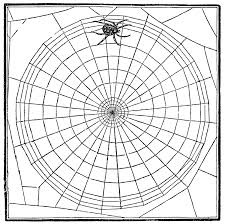 articles free printable spider coloring pages tag