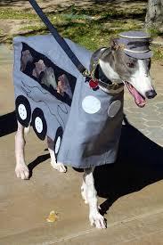 Italian Halloween Costume Greyhound Bus Costume Poor Dog Dog Costumes Poor