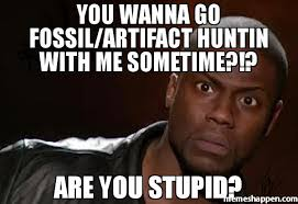 You Stupid Meme - you wanna go fossil artifact huntin with me sometime are you