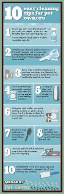 how to keep your house clean 10 tips to keep your house clean while having a dog women fitness