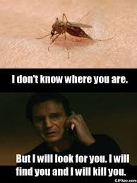 Mosquito Meme - meme when i get bit by a mosquito viral viral videos