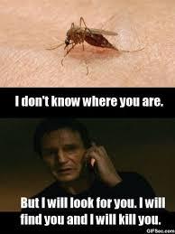 Get Meme - meme when i get bit by a mosquito viral viral videos