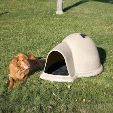 Igloo Dog House Parts Precision Pet Extreme Outback Log Cabin Dog House And Insulation