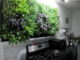 how to planting the best indoor herb garden in your home