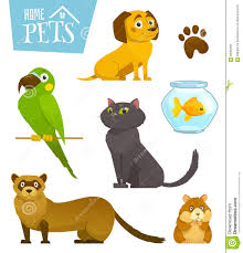 catdog home pets set isolated on white cat dog parrot goldfish hamster