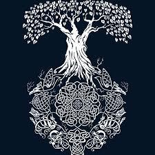 yggdrasil the world tree mythology u0026 cultures amino