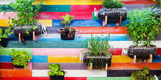 vertical gardens 8 reasons why you should start a vertical garden