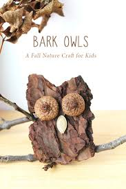 best 25 natural crafts ideas on pinterest nature crafts kids