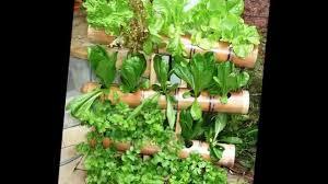vertical gardening for balconies youtube