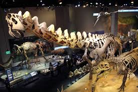 extinct monsters art history and science of museum paleontology