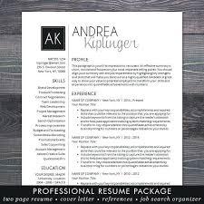 modern resume format modern professional resume lidazayiflama info