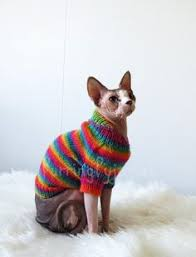 sweaters for cats cat clothes sphynx clothes clothes for sphynx sphynx sweater