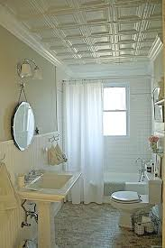 Bathroom Ceilings Ideas Bathroom Ceiling Ideas Twwbluegrass Info