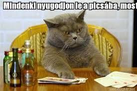 Cat Meme Maker - meme maker mindenki nyugodjon le a picsba most jttem haza nmetorszgbl