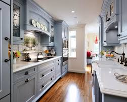 Kitchen Design Ideas For Small Galley Kitchens Wonderful How To Decorate A Galley Kitchen How To Decorate A