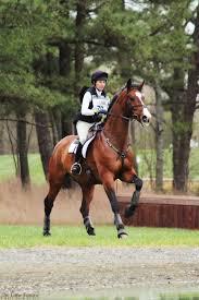 Nice Hourse 3967 Best Horses Images On Pinterest Horses Beautiful Horses