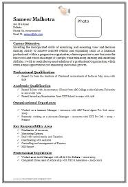 Download Fresher Resume Format How To Make A Professional Performance Resume Cheap Dissertation