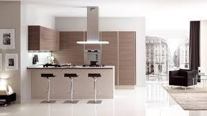 veneta cucine modern kitchen cabinets oyster decor kitchen