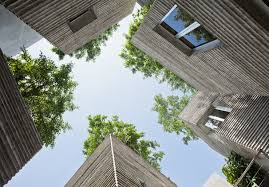 ar house 2014 winner house for trees in vietnam by vo trong nghia