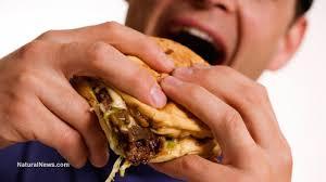 junk food antibiotics cause crohn u0027s disease rates to triple among