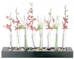 Test Tube Vases Wholesale Test Tube Vase Ikea Arreglos Florales Pinterest Test Tubes
