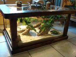 How To Decorate Sofa Table Modern Terrarium Coffee Table U2014 Bitdigest Design Terrarium