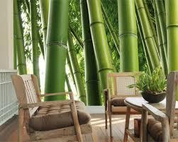bamboo wallpaper for walls 2017 grasscloth wallpaper the best bamboo wallpaper murals amazon com widgets traditional bamboo