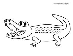 alligator printable images reverse