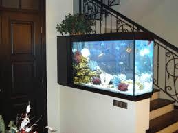 tropical fish tank glass aquarium entryway decorating fish tank