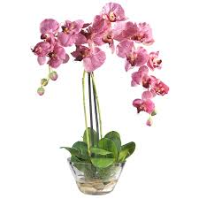 faux orchids phalaenopsis orchid with glass vase 4643